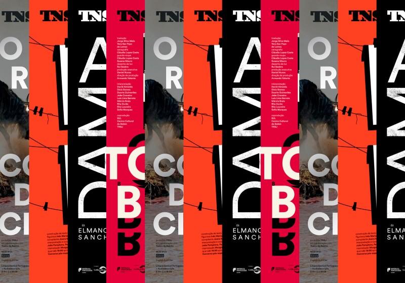 São João National Theatre Posters 2019